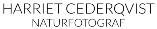 Harriet Cederqvist Logotyp